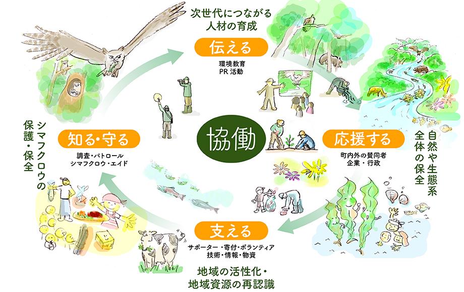 シマフクロウ/協働の図