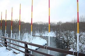 橋の工事とともに作られた鳥類防止柵