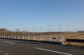 要請後、新たに設置された鳥類防止柵